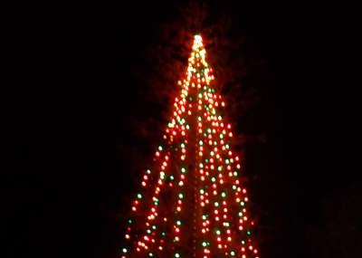 ae4a49fbe9681 El árbol de navidad natural más grande de Chile tomó vida en Ovalle ...